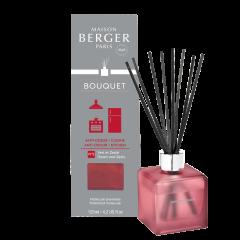 Parfumverspreider Anti-Odeur Cuisine N2