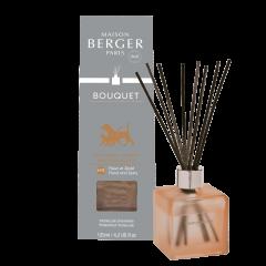 Parfumverspreider Anti-Odeur Animaux N2
